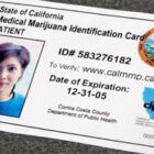Why You Need a State Issued ID Card